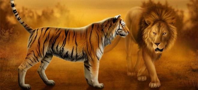 Nằm mơ thấy con hổ báo trước điều gì