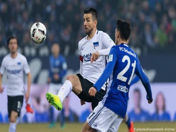 Nhận định bóng đá Schalke vs Hertha Berlin, 23h00 ngày 12/5
